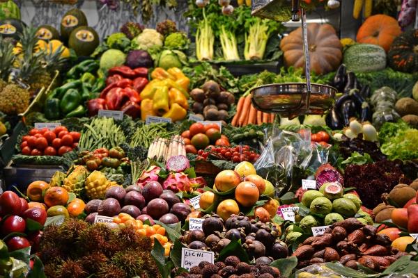 """Evento   """"Biotecnologia Vegetal para a Sustentabilidade e Economia Global"""""""