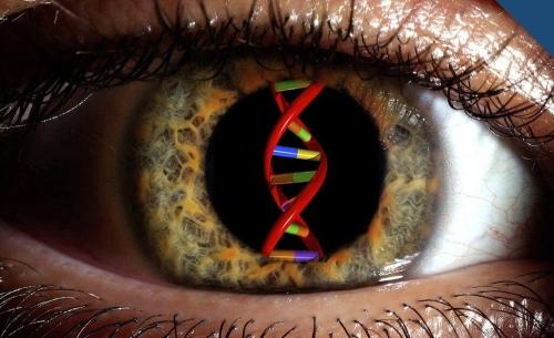 CRISPR | Tecnologia está a ser usada para tratar cegueira, curar cancro da mama e salvar bananas da extinção