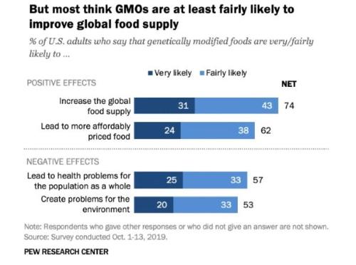 Estudo   A maioria dos americanos acredita que OGM podem contribuir para aumentar a produção global de alimentos