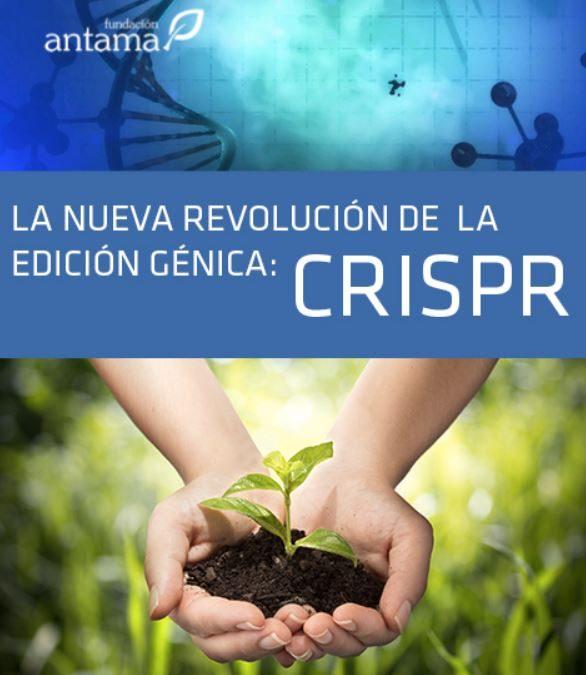 Edição de genomas | Conceitos básicos para entender a tecnologia CRISPR