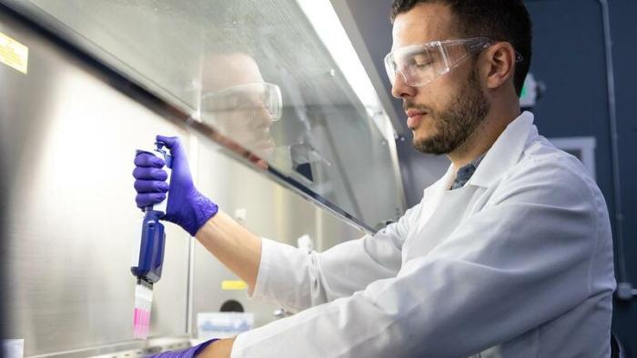 Biotecnologia | Carne do futuro tem DNA português