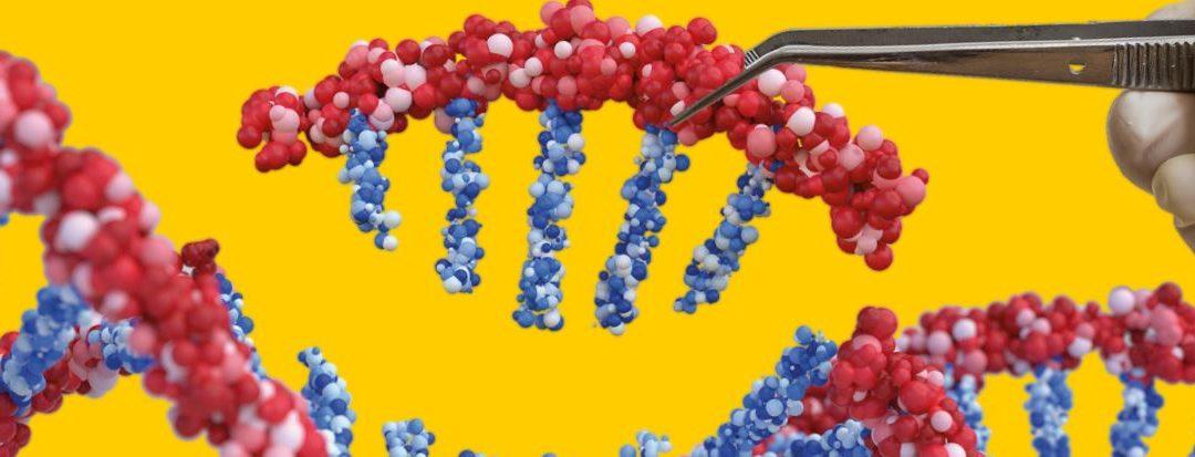 CRISPR | Quer saber o que é e como funciona?