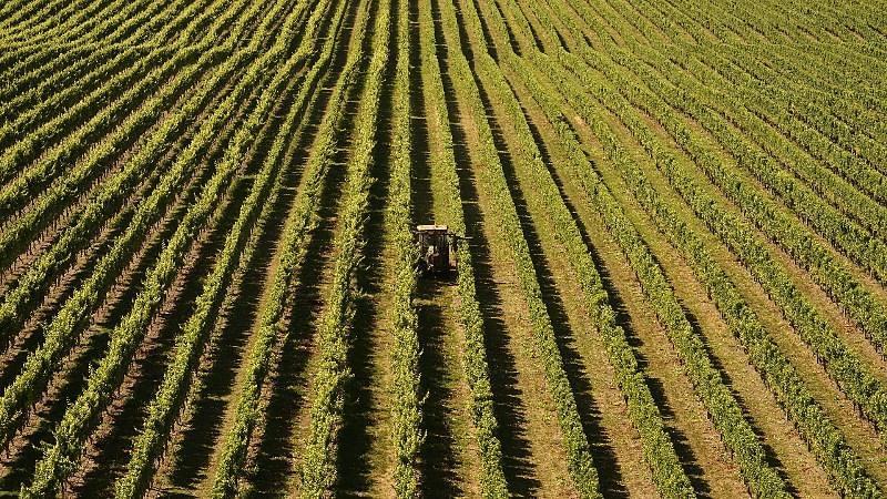 Medidas colocam em risco a produção e a competitividade agrícola da UE