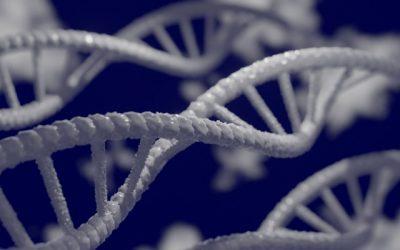 Webinar: Edição do genoma – aplicações na produção de alimentos e na medicina