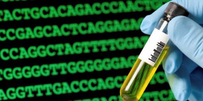 16 de Julho. Webinar sobre Edição do Genoma: Aplicações na produção de alimentos e na medicina. Inscrição gratuita