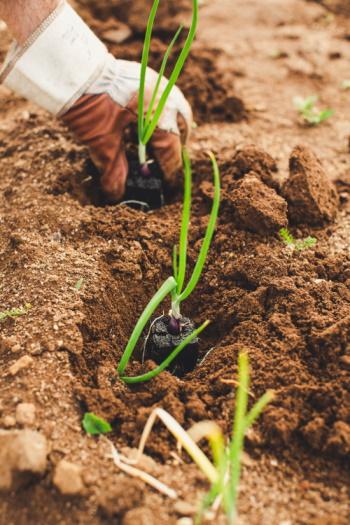 Resistência | Podemos fazer agricultura sem agrotóxicos?