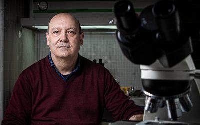 Presidente do Centro de Informação de Biotecnologia     Jorge Canhoto