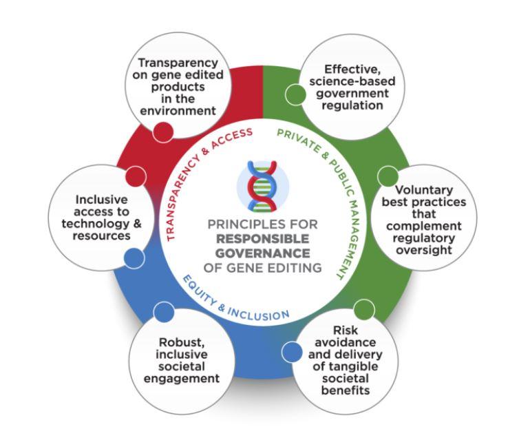 Edição do genoma | ONG estabelecem princípios para regular uso da tecnologia na agricultura