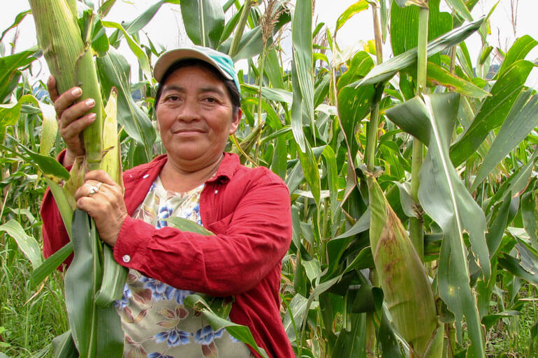 Agrobiotecnologia |Coexistência entre sistemas de produção diferentes é possivel